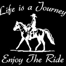 decoration, horse, environmentfriendly, Home & Living