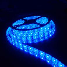 Light Bulb, Blues, xenonlight, carledlightsbulb