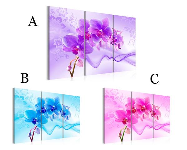 bluepinkpurple, pink, Decor, Flowers