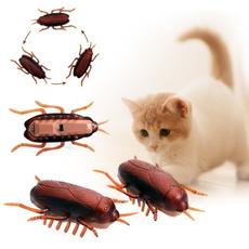 Funny, Training, interactive, Mascotas
