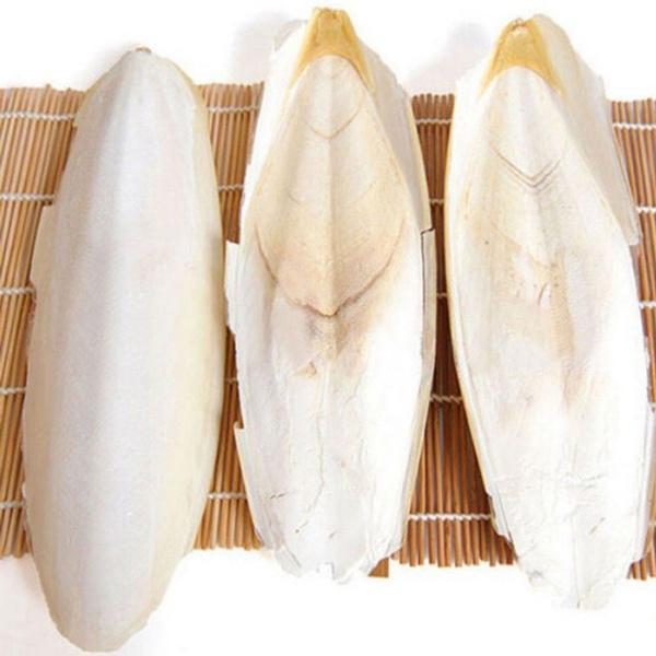 cuttlefishbone, calciumbone, Pets, fish