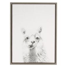 Decor, alpaca, animal print, canvaspainting