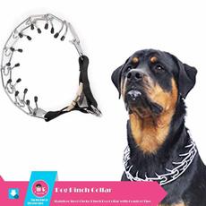 Steel, Collar, Medium, Dog Collar