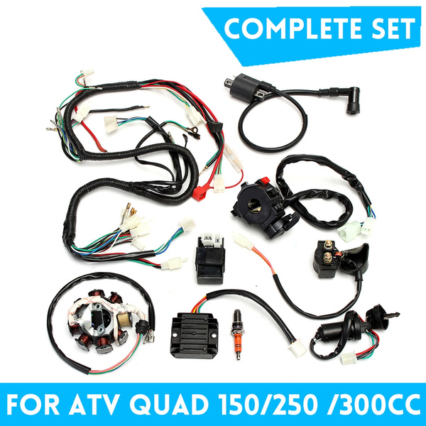 1Set Electrics Wiring Harness Complete Motorcycle Accessories For Chinese  Dirt Bike ATV QUAD 150-250 300CC | WishWish