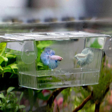 aquariumaccessorie, Box, Tank, Hobbies