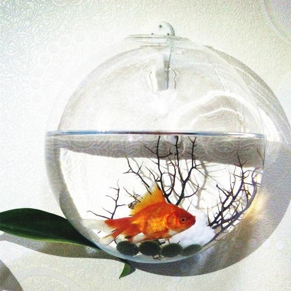 water, Decor, Home Decor, glassvase