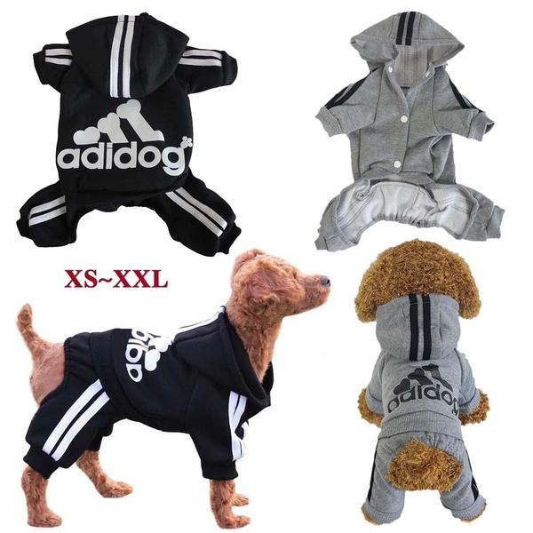 dog clothing, dog winter clothes, dog coat, Winter