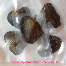 diydecoration, Jewelry, vacuumpackage, oysterwithpearl