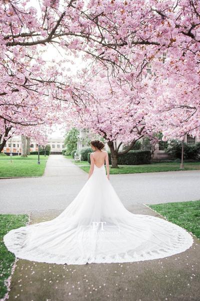 customweddingtrain, Train, Lace, Wedding Accessories