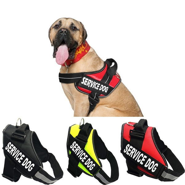 Dog Stuff in Training Vest Harness
