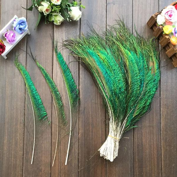 Beautiful, peacock, Natural, peacockfeather