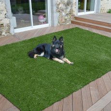 Grass, area rug, Rugs