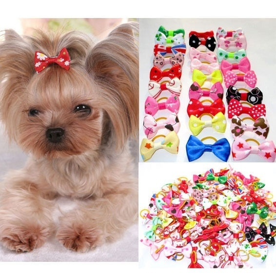 doghairbow, doghairbowswithrubberband, Pets, Dogs