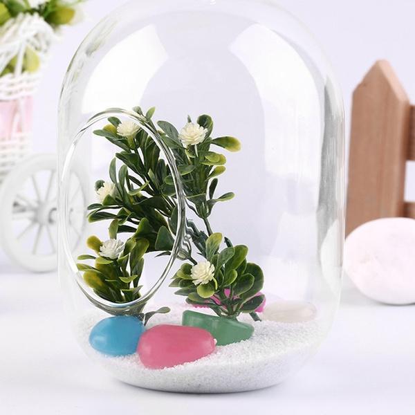 Plants, plantcontainer, glassvase, Home & Living