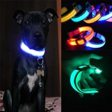 petsafetycollar, puppy, dogsaftycollar, puppycollar