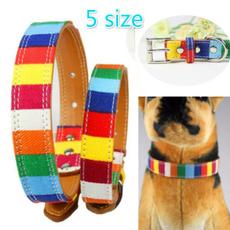 rainbow, Designers, Dog Collar, Colorful