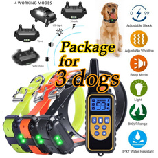 Training, Remote Controls, barking, petaccessorie
