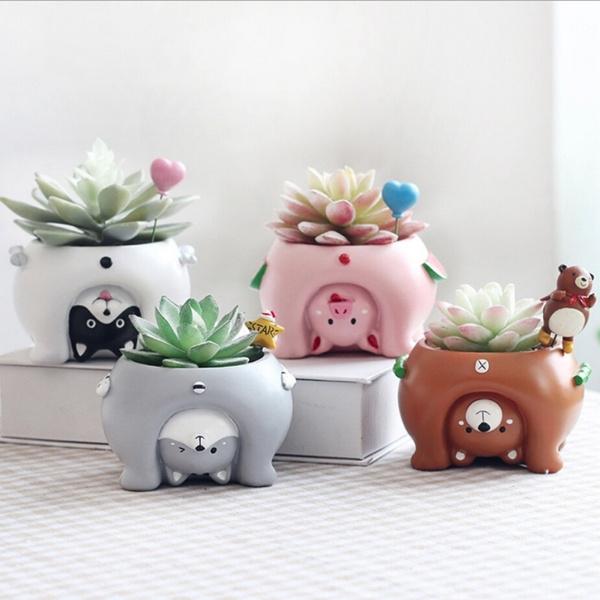 Plants, pottedplanter, Garden, Office