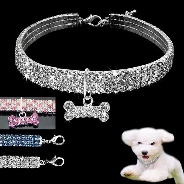 Medium, Dog Collar, Jewelry, Pets