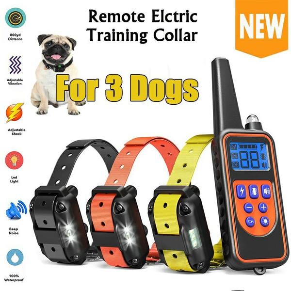 Collar, Dog Collar, electricdogtrainingcollar, Waterproof