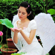 Angel, angelwing, featherwing, Costume