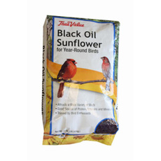birdfoodsupplie, For Your Pet, Sunflowers, Bird