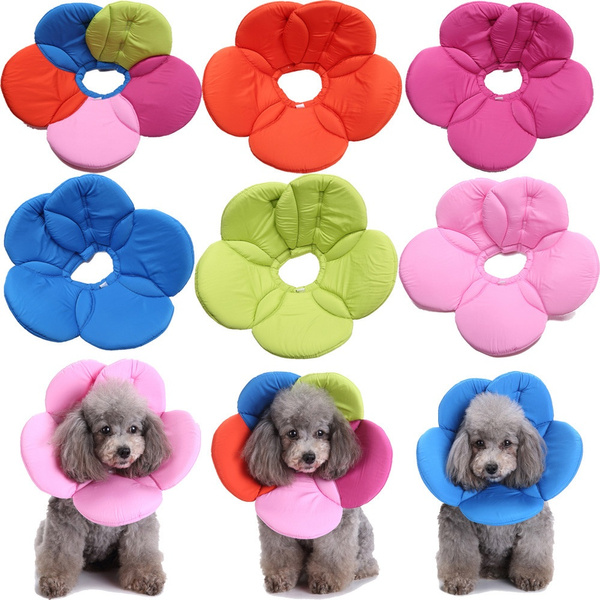 dogrecoverycone, petsupply, Pets, Dogs