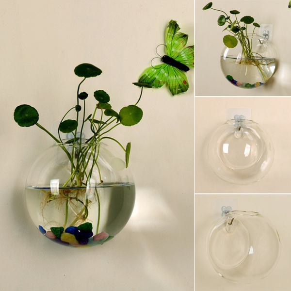 Plants, Flowers, Glass, fish