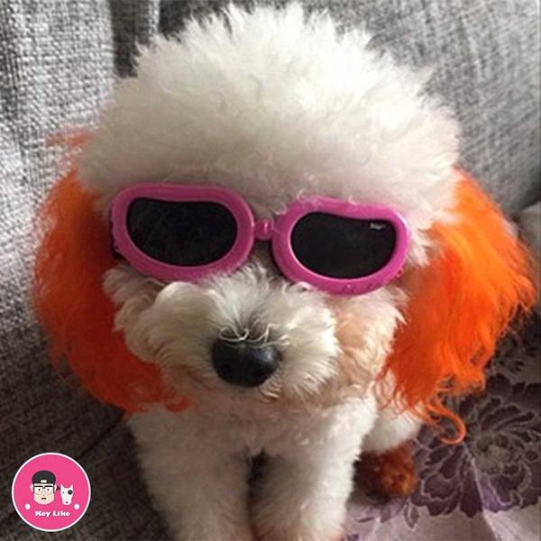 puppyaccessorie, cool sunglasses, uv, Waterproof