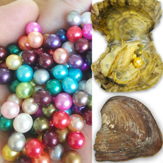 Clothing & Accessories, shells, Jewelry, Gifts