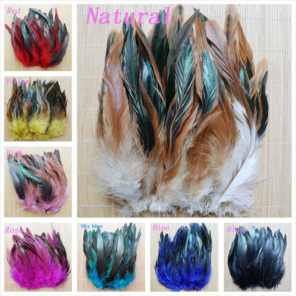 Beautiful, rainbow, Christmas, roosterfeather