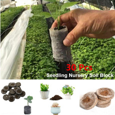 planting, Flowers, Magic, Garden