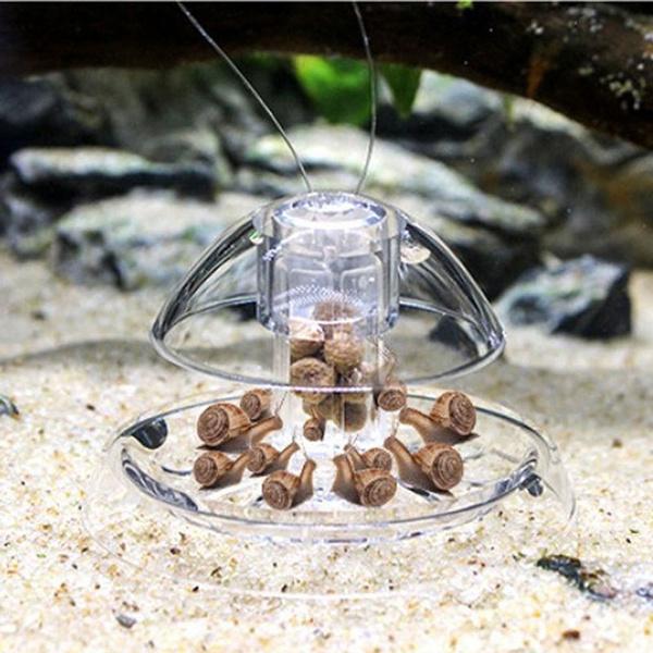 aquariumsandsupplie, Tank, snailtrapsnail, Pet Products
