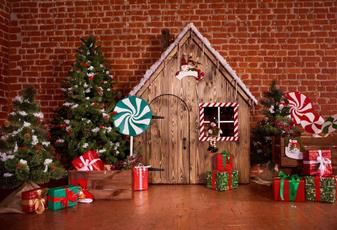 decoration, Christmas, house, Photography