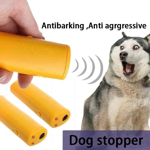 dog accessories, led, barkingcontrol, Pets