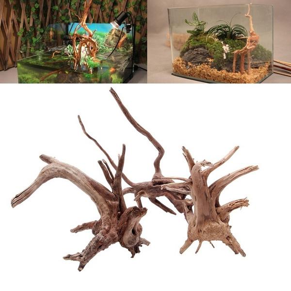 treestump, Wood, Plants, treetrunk