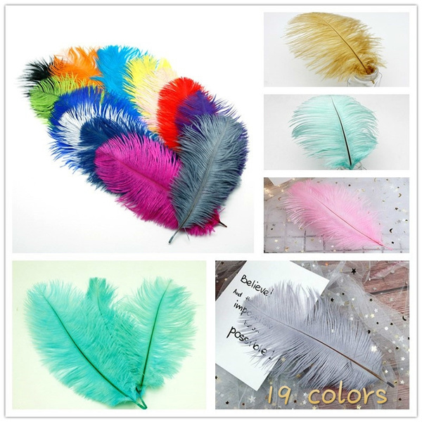 party, decorativematerial, multicolorfeather, Jewelry