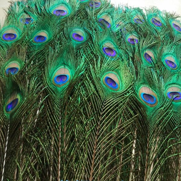 peacock, Decor, Fashion, apparelsewingampfabric