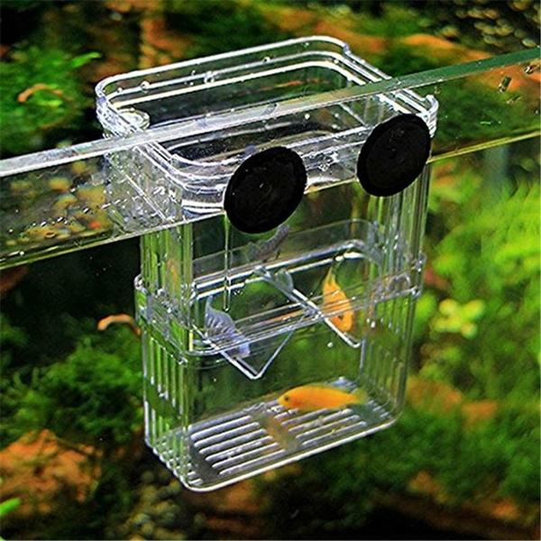 aquariumaccessorie, Box, aquariums, Tank