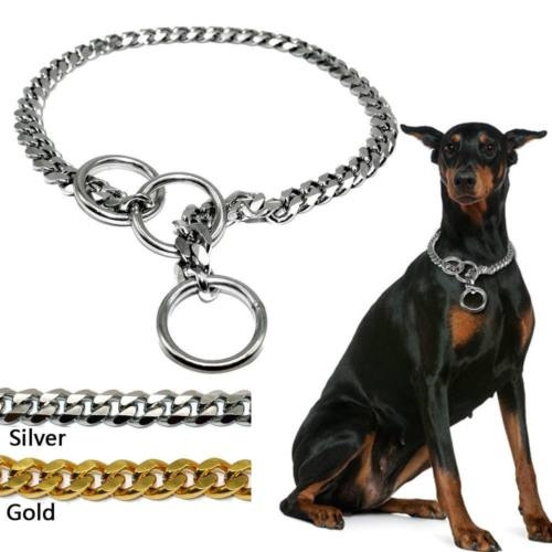 Steel, Medium, Chain, pitbullcollar