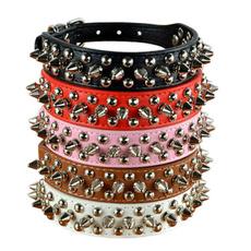 Fashion, Dog Collar, Jewelry, Mushroom