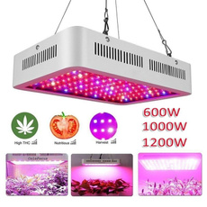 plantlamp, Plants, Indoor, led