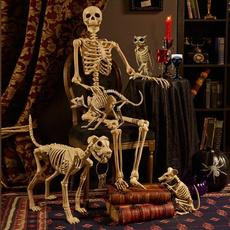 party, Bat, Skeleton, skull