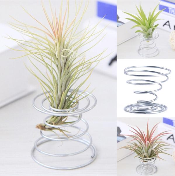 airplantstand, Plants, tillandsia, Container