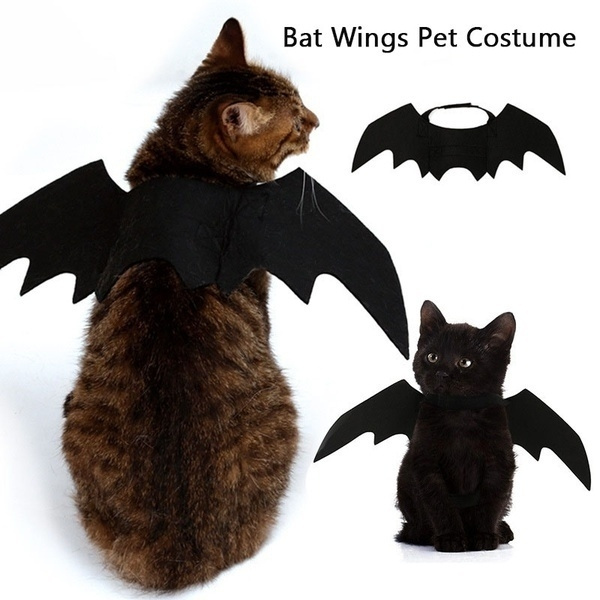 halloweencostumeforcat, cute, Bat, Cosplay