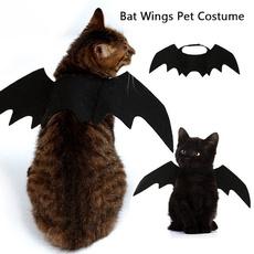 halloweencostumeforcat, cute, Bat, Cosplay