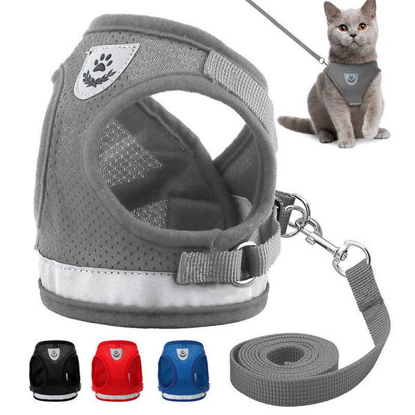 bowknot, Vest, Pets, Harness