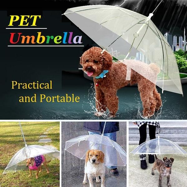 transparentumbrella, petrainsnowumbrella, Umbrella, Waterproof