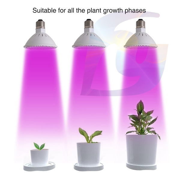 growinglight, plantsseedsbulb, Flowers, hydroponiclight