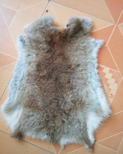 fur, furpelt, Animal, rabbitskin